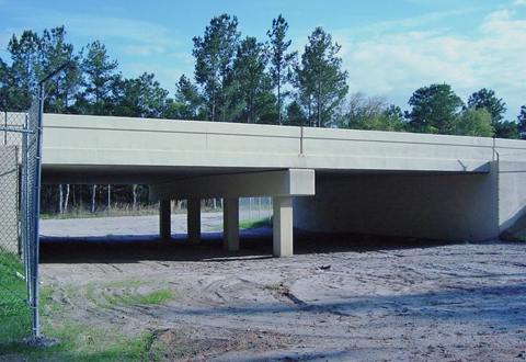 SR 46 Wildlife Crossing